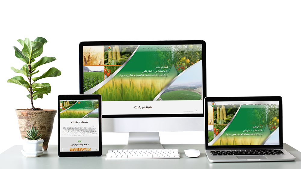 طراحی سایت هلدینگ
