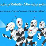 meta-tag-robots